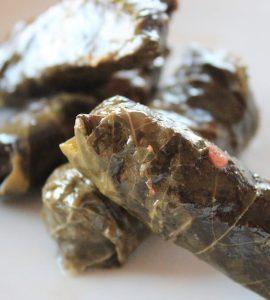 سيرة فلسطينيّة لورق العنب grape leave cose up 270x300